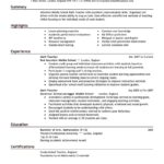 resume examples for teachers summary highlights experience