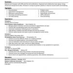 caregiver healthcare resume example traditional
