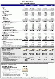 business plan assumptions examples download
